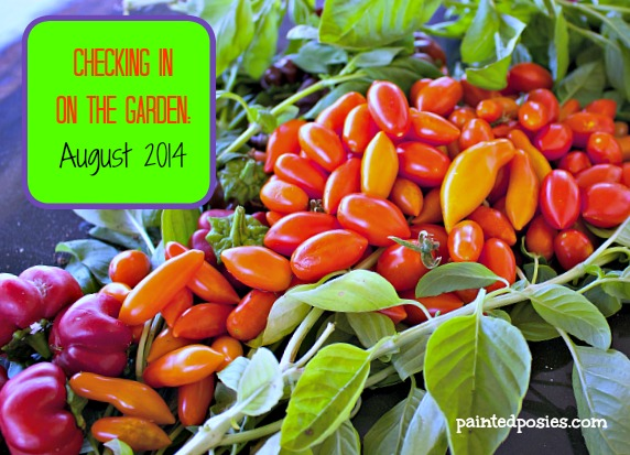 Checking in on the Garden August 2014