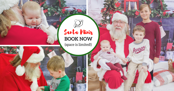 Santa Minis #1 Welcome To Painted Posies Photography