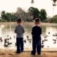 Roadrunner Park Feeding Ducks Phoenix Arizona